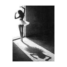 Backyard Ballet Printed Wall Art