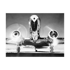 Aviator Printed Wall Art