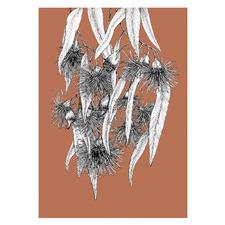 Terracotta The Flowering Gum Unframed Paper Print