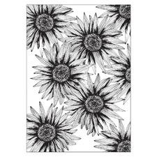 White Sunflowers Everywhere Unframed Paper Print
