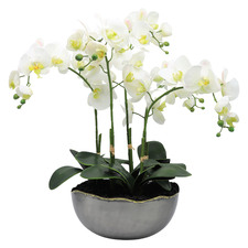 54cm Potted Faux White Orchid Plant