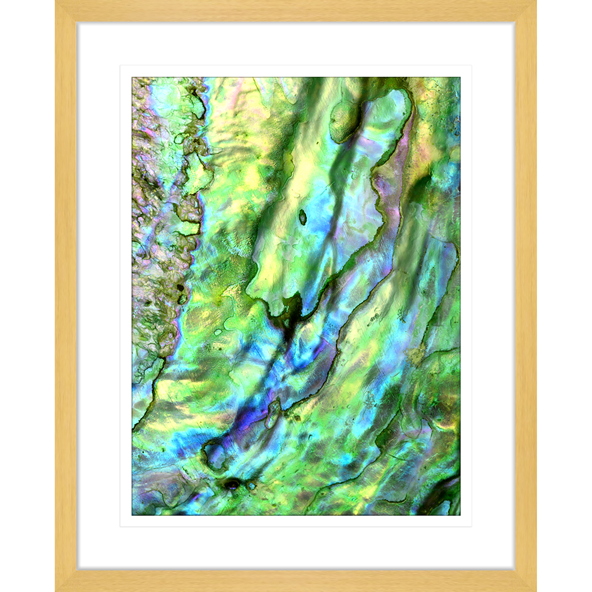 NEW-Pacific-Paua-II-Framed-Print-Innovate-Interiors-Wall-Art