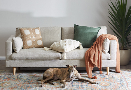 What should I look for when buying a sofa