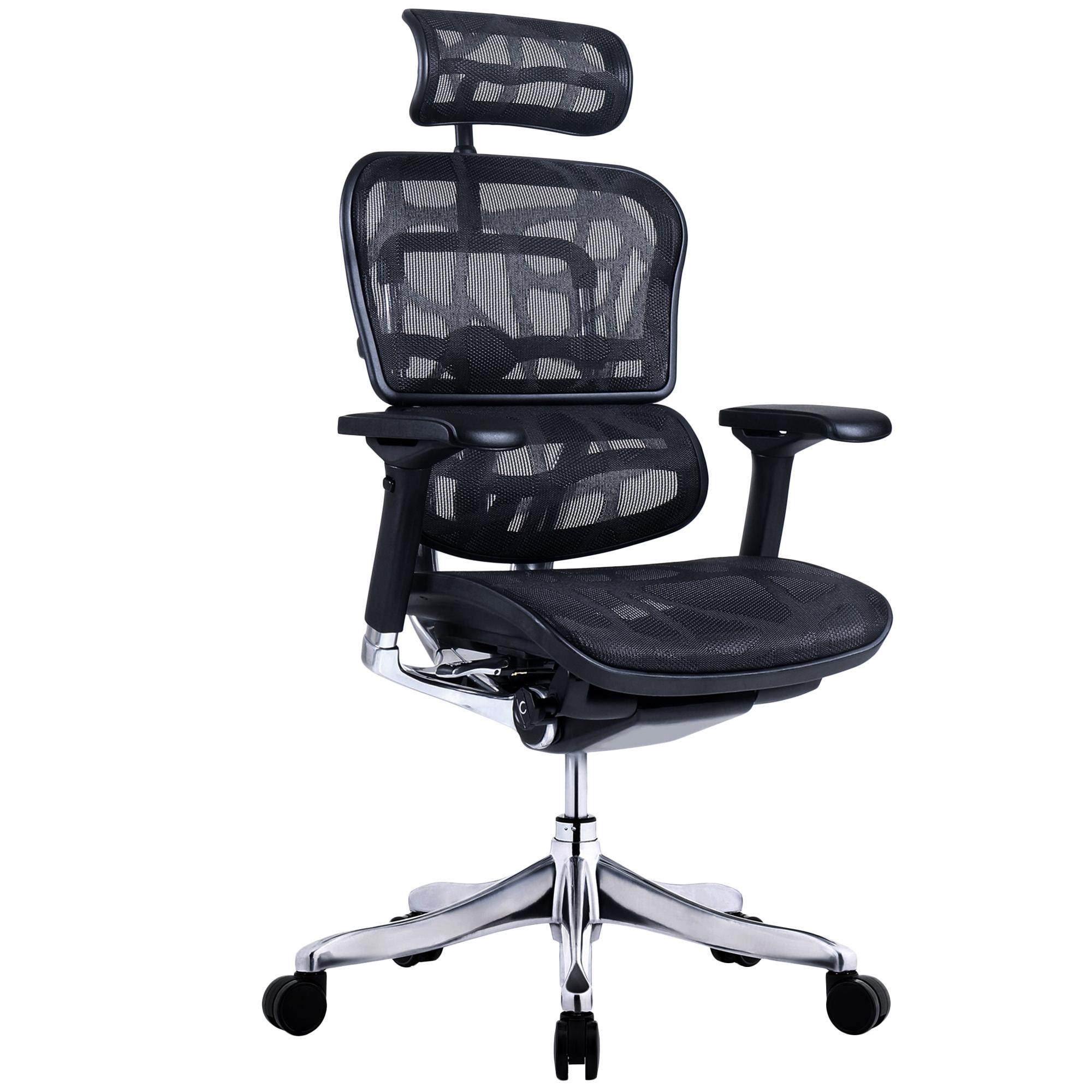 Ergohuman Plus Elite V2 Mesh Office Chair