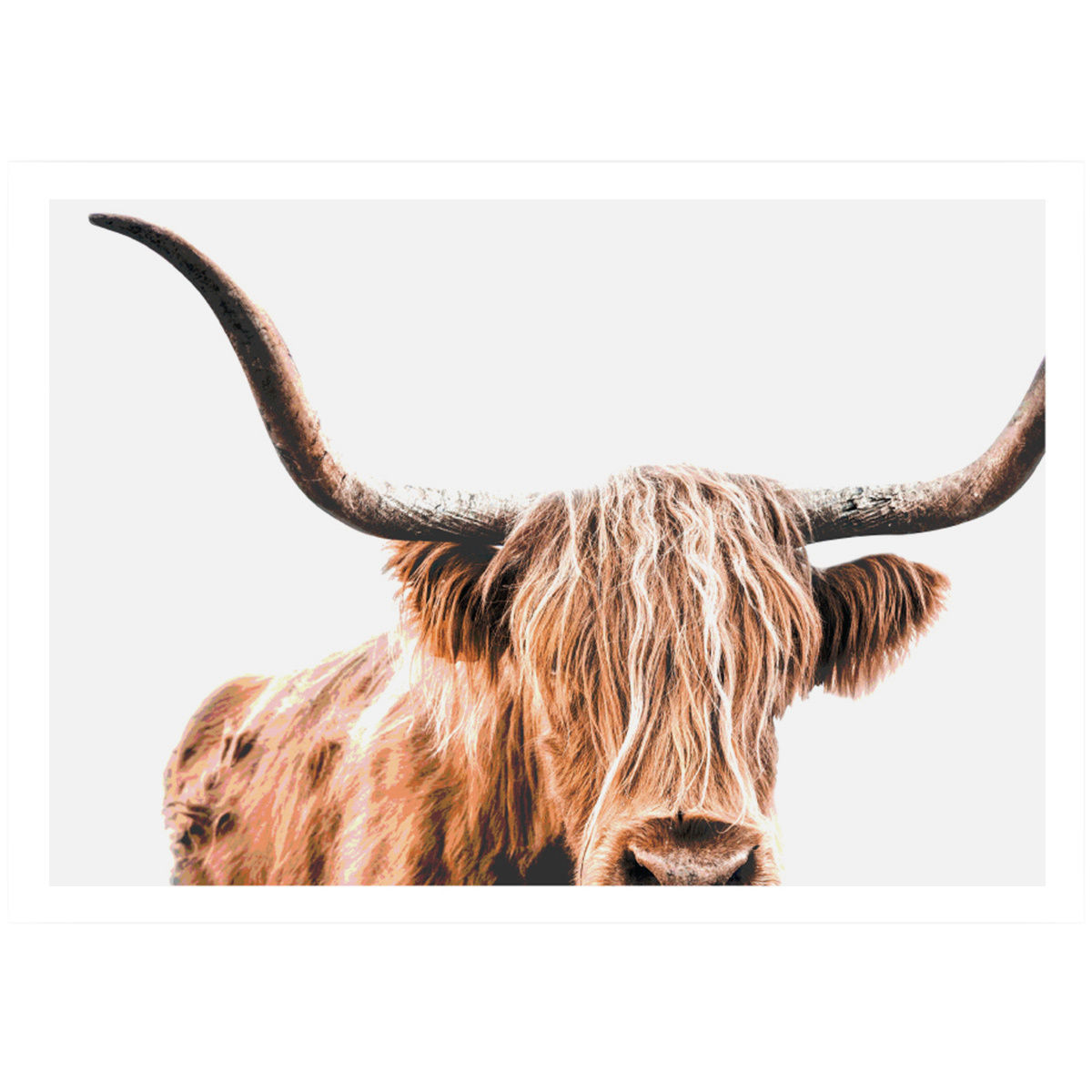 Highland Cow Printed Wall Art Temple Webster