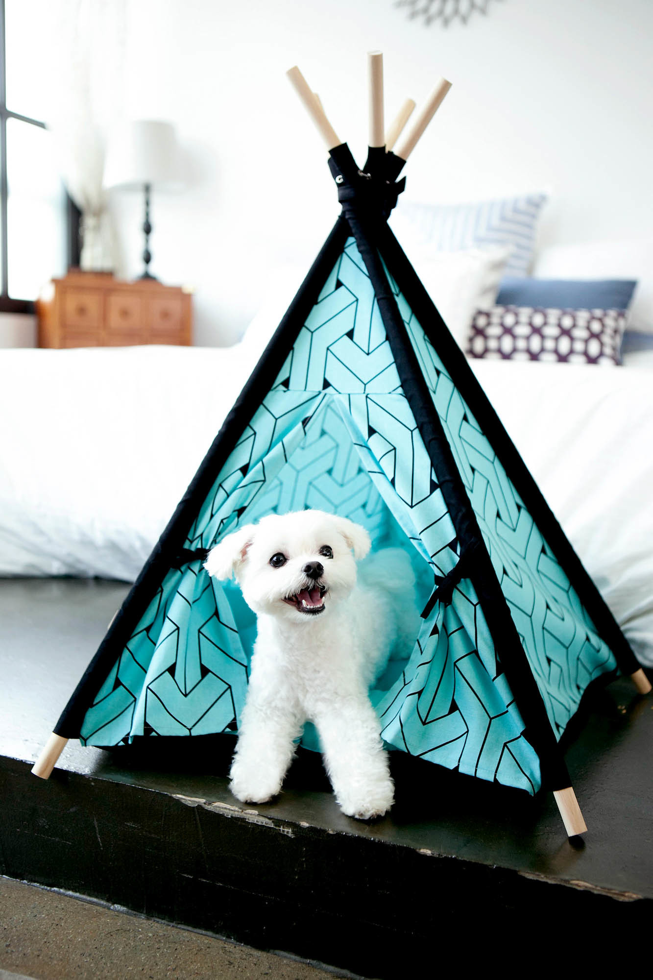 NEW-Mint-Pet-Teepee-Tent-Huts-and-Bay-Pet-Beds-amp-Blankets