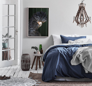 Eclectic Coastal Bedroom photo by Temple & Webster